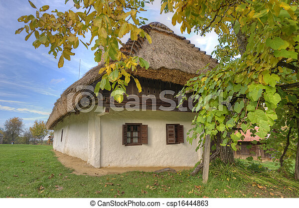 Old hungarian house