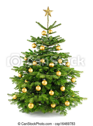 Lush christmas tree with gold ornaments - csp16469783