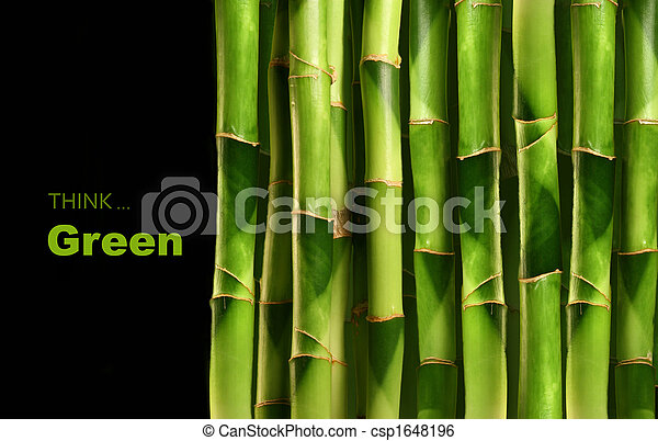 Bamboo shoots stacked side by side - csp1648196