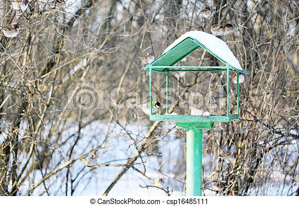 Feeder for birds - csp16485111