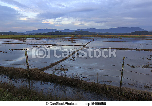 Rural scene deep inside Borneo - csp16495656