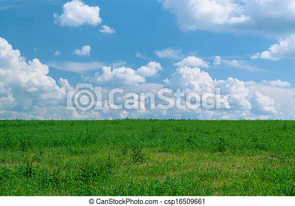Summer shining meadow with blue sky and fluffy clouds