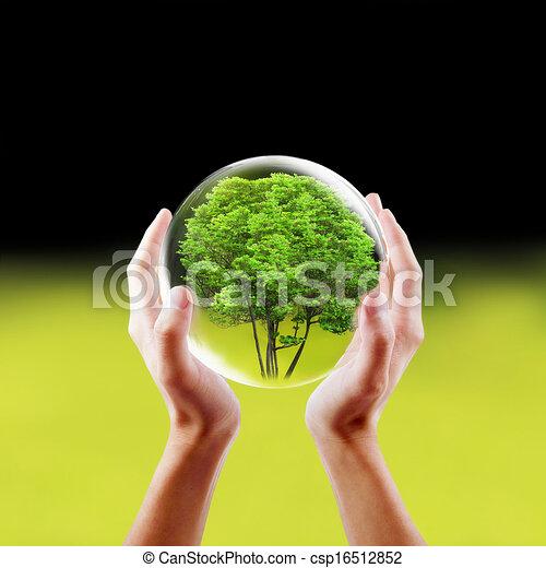 Saving nature concept - csp16512852