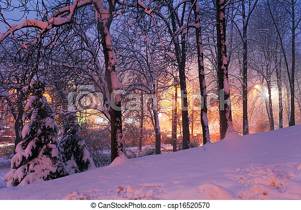 snow on trees and city lights - csp16520570