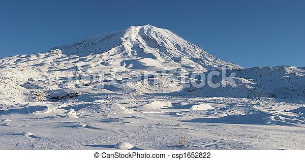 Panoramic image of Mount Ararat in winter - csp1652822