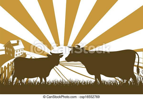 Sunrise Cow Farm Landscape - csp16552769