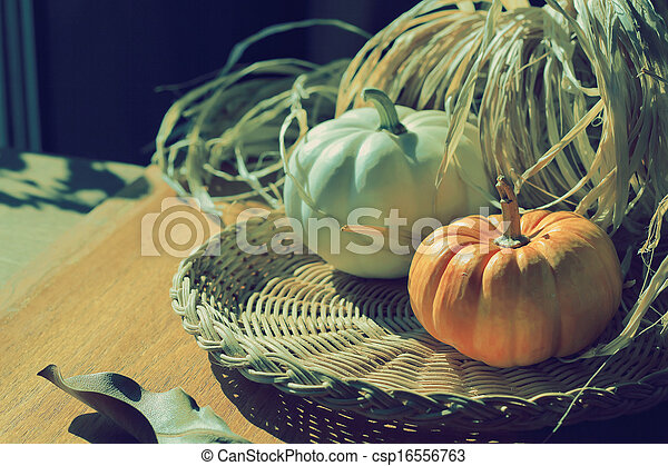 Thanksgiving Background with Pumpkins. Retro card - csp16556763