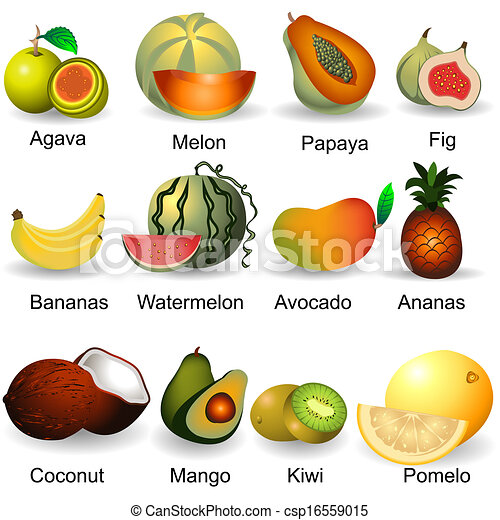 collection of fruits 2 - csp16559015