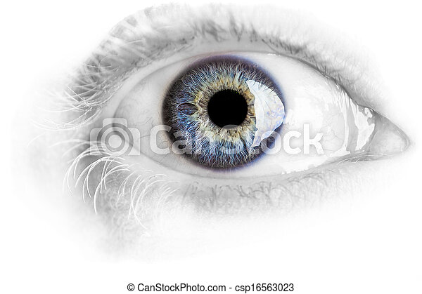 Macro blue eye with lots of details isolated on white - csp16563023