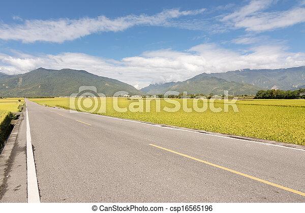 Road in rural - csp16565196