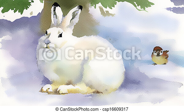 Winter rabbit - csp16609317