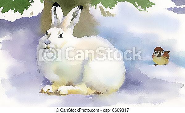 Winter rabbit - csp16609317