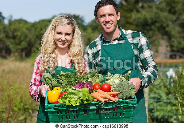 夫婦, 驕傲, 蔬菜, 顯示, 年輕 - csp16613998