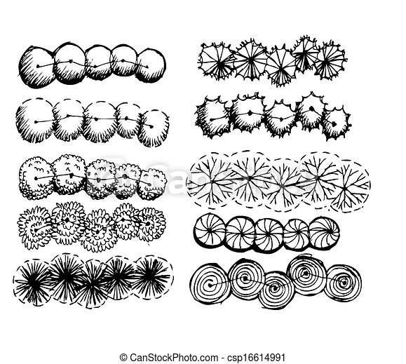 Architectural Trees Drawings Trees Top View For