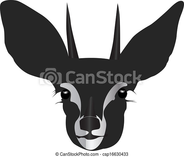 Antelope Face Drawing Vector Antelope Head