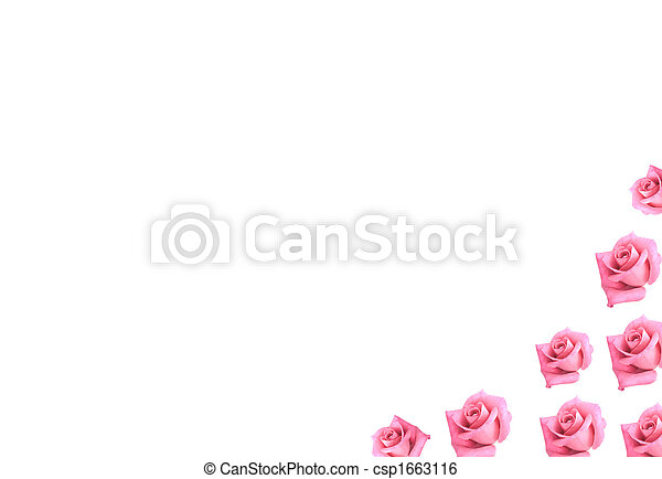 pink roses flowers border scrapbooking background - csp1663116
