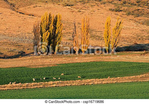 Rural landscape - csp16719686