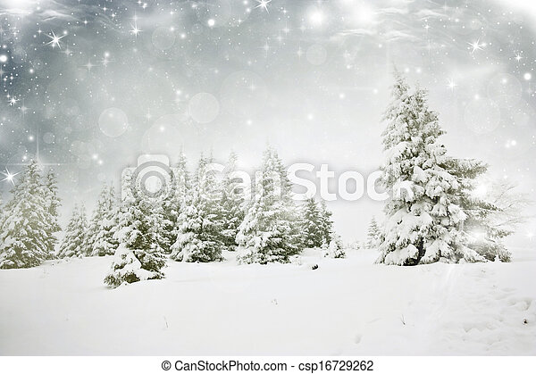 Christmas background with stars and snowy fir trees - csp16729262