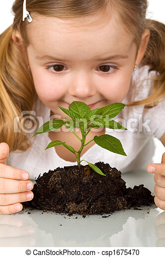 Happy little girl observing young plant - csp1675470