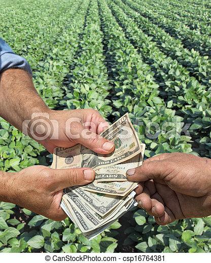landwirtschaft - csp16764381