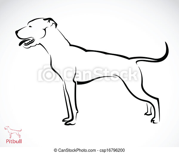 Vector Clipart of Vector image of an pitbull dog on white ...