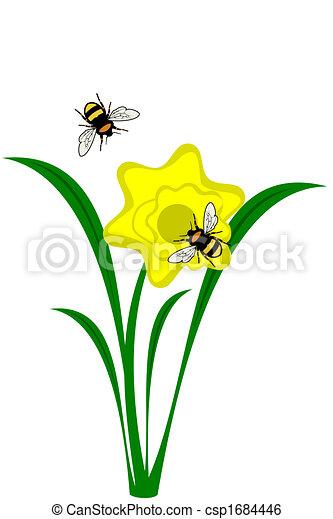 Illustration de jonquille fleur a jaune daffodil - Dessin jonquille fleur ...