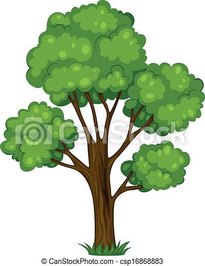 Vector of A tall tree - Illustration of a tall tree on a ...