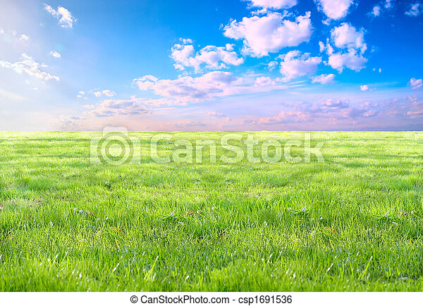 Grass and sky - csp1691536