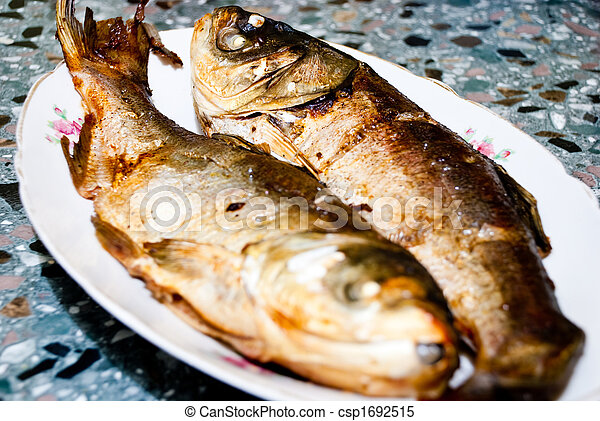 two baked fishes - csp1692515