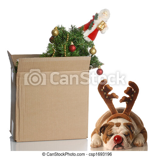 packing up christmas - csp1693196