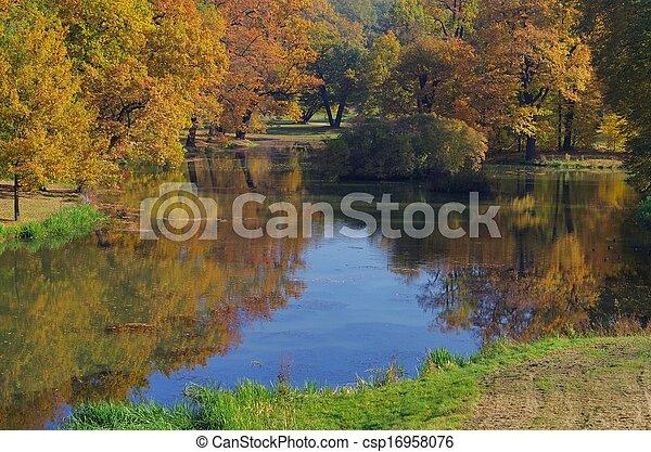Oak tree in fall  - csp16958076