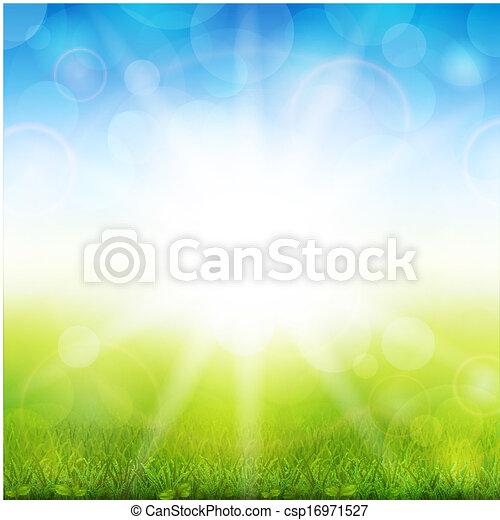 Beautiful summer  - csp16971527