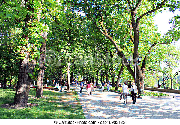 people having a rest in park with trees - csp16983122