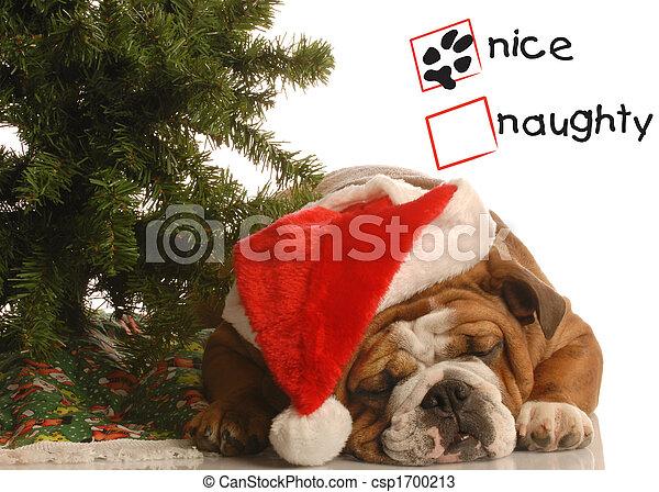 naughty or nice dog - csp1700213