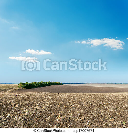agriculture plowed field and blue sky - csp17007674