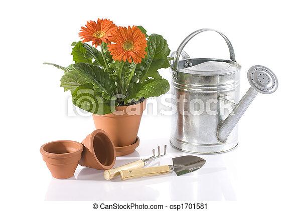 gardening - csp1701581