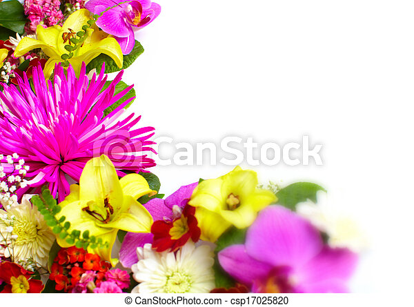 Floral greeting card with beautiful flowers. - csp17025820
