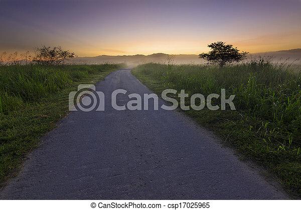 Single lane with misty sunrise - csp17025965