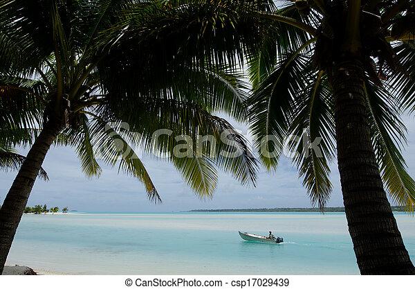 Photo p cheur peche bateau aitutaki lagune for Cuisinier bateau