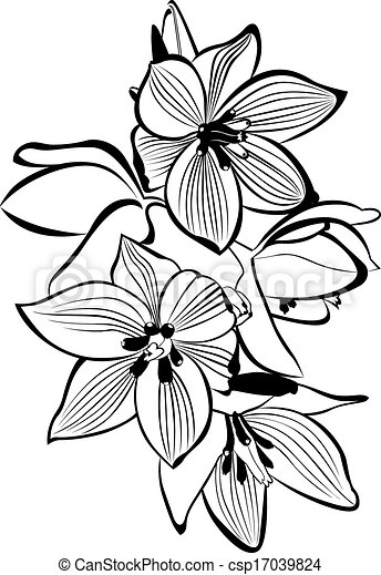 Vector Illustration of orchids csp17039824 - Search Clipart ...