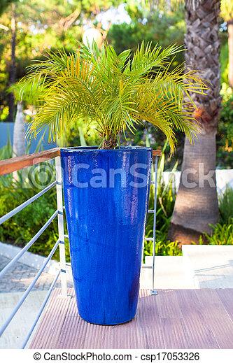 photo de bleu, grand, portugalia, pot fleurs, fleurs - big, bleu