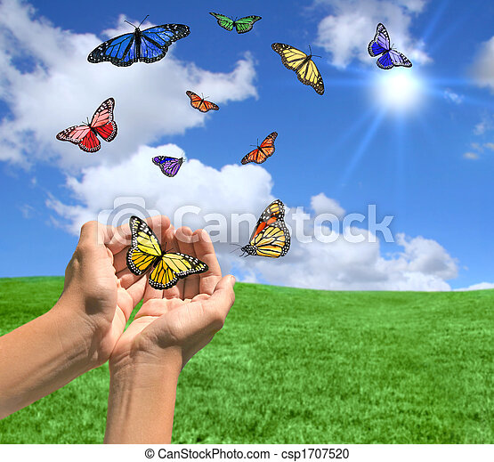 Happy Bright Landscape WIth Butterflies - csp1707520