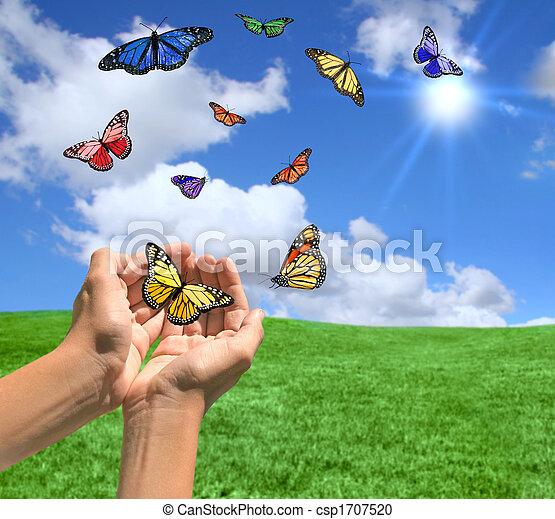 hell, vlinders, landschaftsbild, glücklich - csp1707520