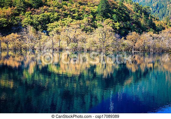 beautiful jiuzhaigou in autumn - csp17089389