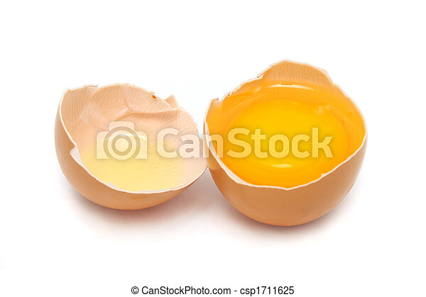 Raw Egg - csp1711625