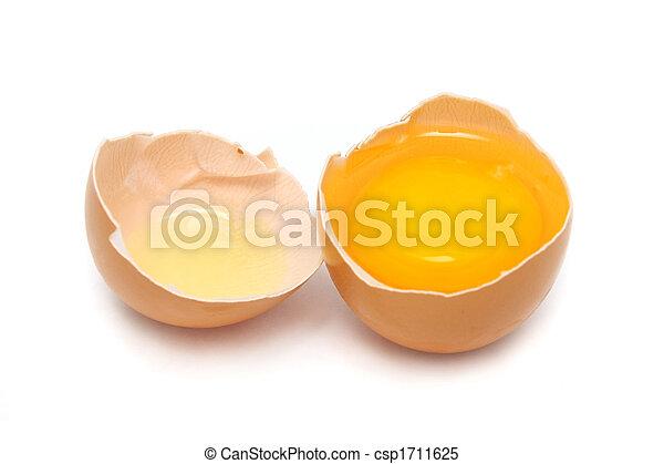 Raw Egg - csp1711625