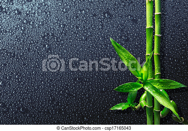 spa background - drops and bamboo  - csp17165043