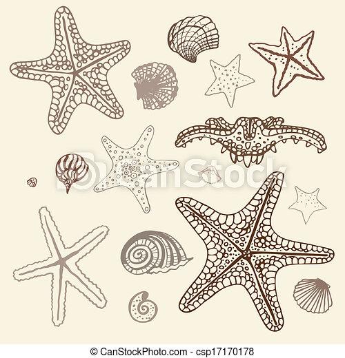 Small Starfish Drawing Sea Starfish Set Hand Drawn