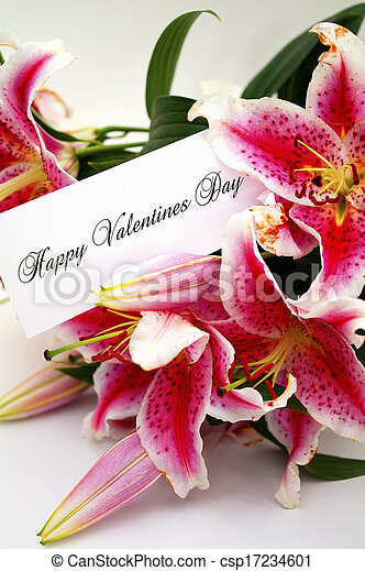 valentines day card with liliums - csp17234601