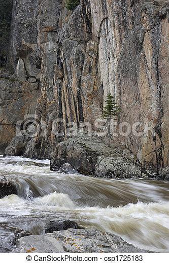 mountain stream in a deep canyon - csp1725183